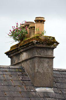 Fireplace, Ireland, Flowers, Chimney, Old, Roof, Plant