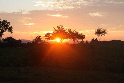 Lying Sun, Landscape, Nature