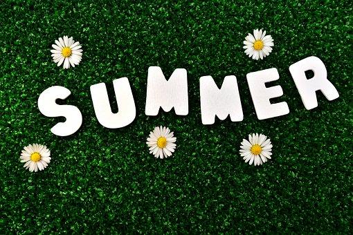 Summer, Feeling, Warm, Holiday, Sun, Beautiful