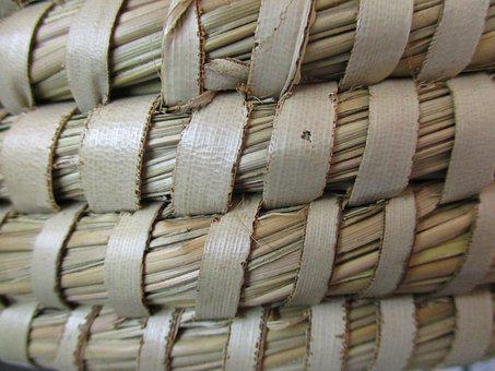 Fibers, Plot, Basket