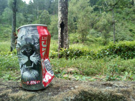 Beer, Lion, Brand, Nature's, Fun, Life, Happy, Smiling