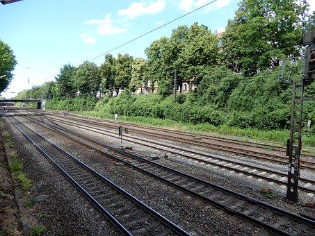 Railway System, Trees, Seemed, Green