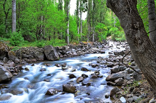 River, Landscape, Turkey, Nature, Green, Open Air