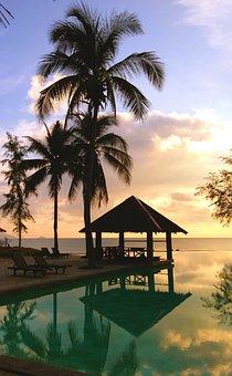 Hut, Resort, Palm Tree, Vacation, Ocean, Sea, Summer
