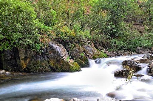River, Landscape, Turkey, Nature, Green, Open Air