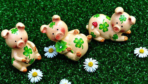 Lucky Pig, Figures, Cute, Luck, Shamrocks, Lucky Charm
