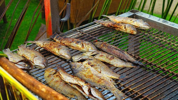 Fish, Eating, Grilling, Grill, Dinner, Kitchen, Fresh