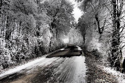 Winter, Trees, Ice, Road, Winter Trees, Nature, Snowy