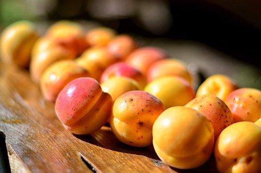 Apricot, Fruit, Macro, Healthy Eating, Fresh, Yellow