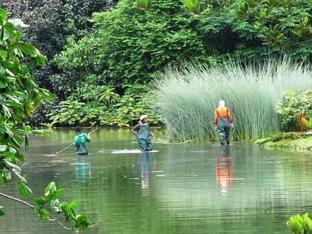 Fishing, People, River, Garden, Singapore