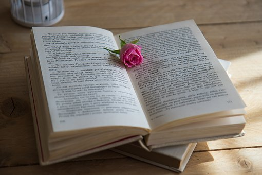 Book, Romantic Scene, Love Story, Rose, Novel