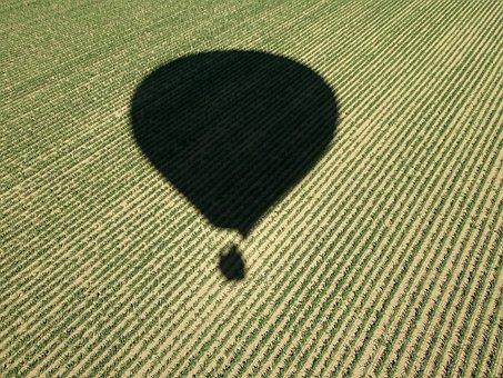 Cornfield, Hot Air Balloon, Hot Air Balloon Ride