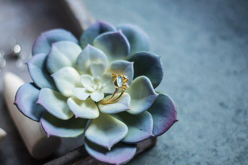 Ring, Gold, Natural Stone, Silver, Finger Ring, Stand