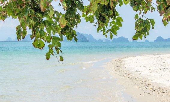 Beach, Rest, Recovery, Sand, Water, Swim, Sea, Lake
