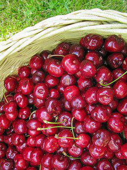 Cherry, Summer, Fruit, Succulent, Sunshine, Vitamin