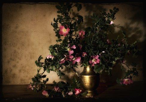 The Background, Spring, Wild Rose, Composition, Vase