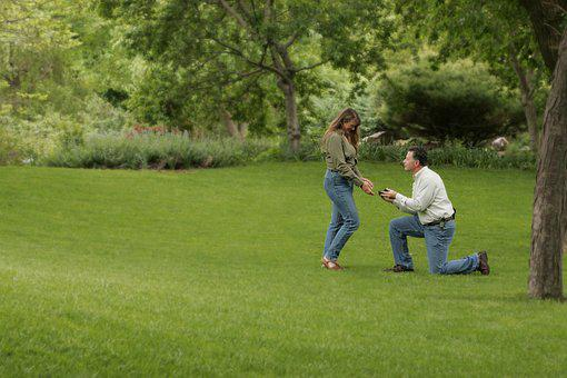 Engagement, Wedding, Proposal, Grass, Lawn, Knee, Ring