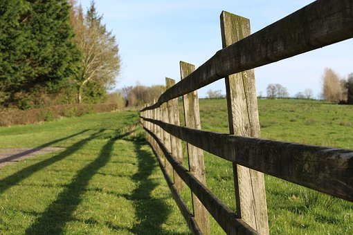 Lines, Fence, Shadows