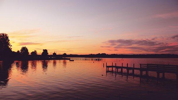 Sunset, Lake, Web, Shadow, Trees, Nature