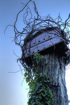 Birdhouse, Tree House, Nature, Handmade, Shelter, Wood
