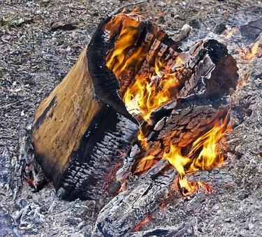 Log Fire, Fire, Burn, Fireplace, Firewood, Burning