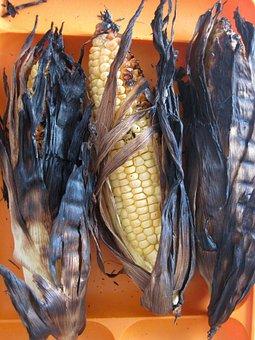 Corn, Kernels, Burnt, Yellow, Indian, Maize, Plant