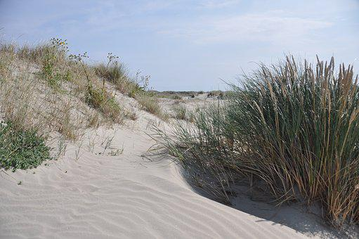 Sand, Dunes, Marram Grass, Summer, Sun, Beach, Daylight
