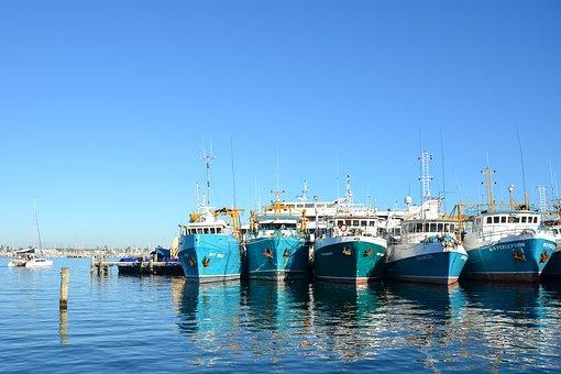 Boats, Harbour, Moored, Harbor, Port, Dock, Marine