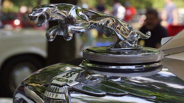 Jaguar, Old Cars, Oldtimer, Automotive, Hobby, Old