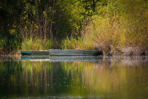 Boats, Lake, Nature, Landscape, Water, Fischer, Fish