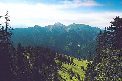 Mountain, Forest, Nature, Grass, View, Panorama, Sky