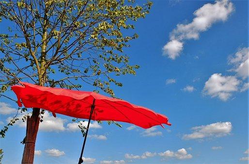 Screen, Summer, Parasol
