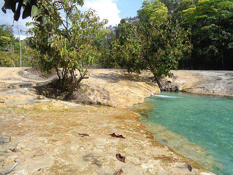 Emerald Pool, Pool, Sky, Green, Forest, Water, Tropical