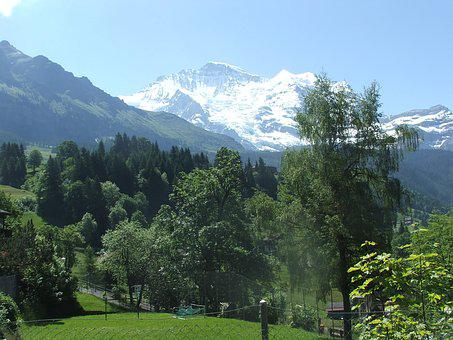 Jungfrau, Mountain, Summer, Wengen, Switzerland, Alps