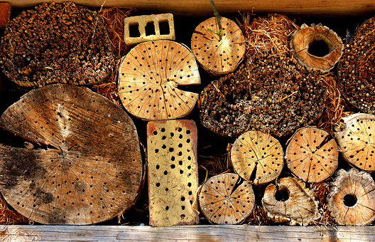 Insect Hotel, Insect House, Insect Asylum, Insects Wall