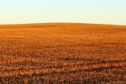 Sunset, Field, Mood, Landscape, Fields, Nature, Dusk
