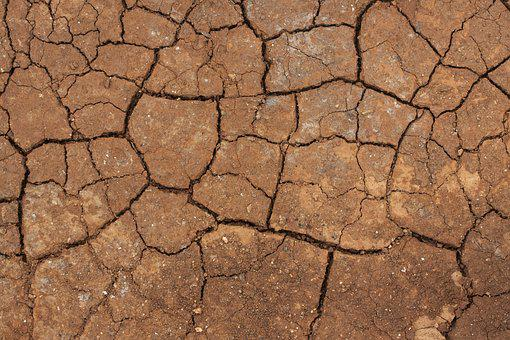 Dried Up, Terry, Crack, Water, Infertility