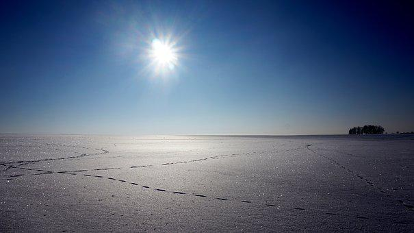 Winter, Snow, Tracks, Blue, Sky, Frost, Nature, White