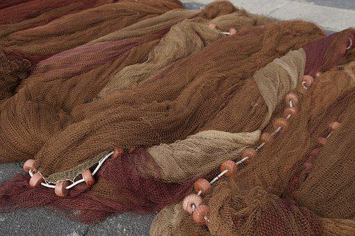 Fishing Nets, Networks, Dry, Fischer, Fishing, Port