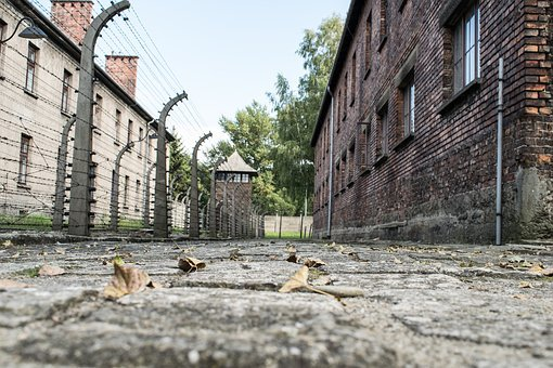 Auschwitz, Concentration Camp, War