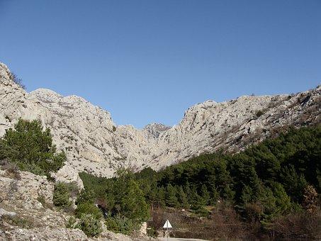 Mountain, Sunny Day, Sky, Lands, Landscape, Forest
