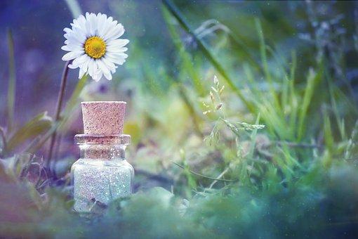 Bottle, Flower, Natural, Sweet, Green, Magic, Spell