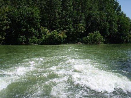 Current, Flow, Price, Stream, Water, Forest, Landscape
