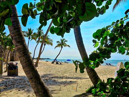 Beach, Panorama, Holidays, Landscape, Water, The Sun