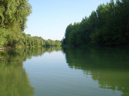 Backwater, Danube, Branch, The Danube, Water, River