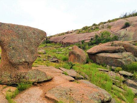 Pink Granite, Rock Formation, Wild Flowers