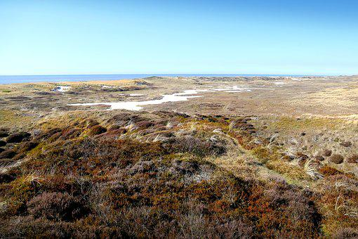 Dunes, North Sea, Sea, Nature, Landscape, Coastline