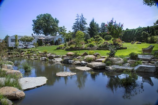Natural Pond, Stepping Stones, Boulders, Nature, Stone