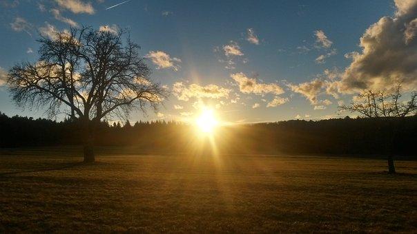 Sunset, Sunbeam, Sun, Abendstimmung, Setting Sun, Trees
