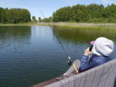 Fish, Lake, Water, Lagoon, Pond, The Silence
